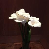 地元でお花見 その3