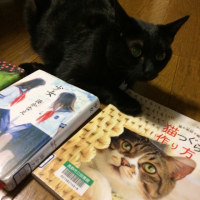 図書館の本〜その44〜