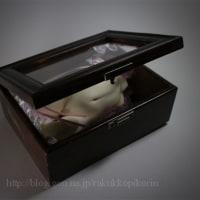 「箱人形」の通販募集は終了しています。
