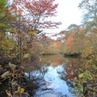 公園と千歳川を散策に・・・