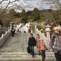 登り初め~お正月は大山詣【阿夫利神社下社編】