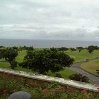 南国☆沖縄