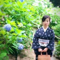 紫陽花を見に行ってきたよん♡