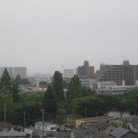 今日は午後から雨の天気だ