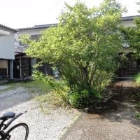 日本キリスト教婦人矯風会学生ホーム同窓会