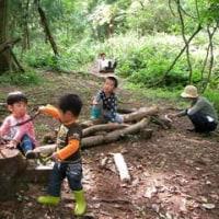 11月15日 にじの森お申し込みフォーム