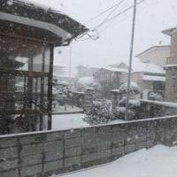 小寒 暦どおりの冬景色