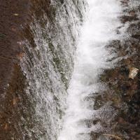 大分川とその支流