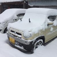 maco10 新雪を喰らう