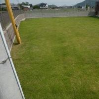 今日の芝生状況は 06月18日♪