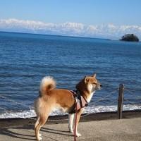 金沢の旅 その7 →富山→新潟