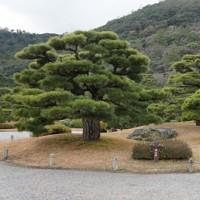 栗林公園~香川県高松市栗林町