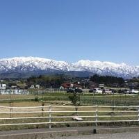 昼下がりの「立山連峰」パートⅡ