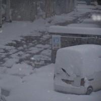 今朝、雪が積もった