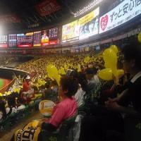 野球場・・・・・・・・・・(*^_^*)