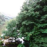 9月20日 台風2