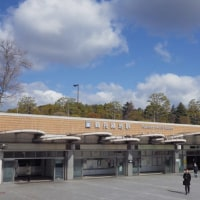 花博記念公園鶴見緑地 「咲くやこの花館」 (大阪市)