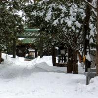 札幌も冬景色