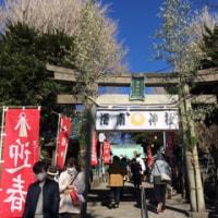 三浦市の海南神社に初詣クルーズ
