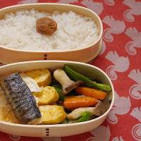 原木ヒラタケをカレー煮にしてご飯にかける朝・お昼は鯖弁当