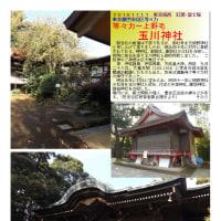 散策 「東京南西部-365」 玉川神社