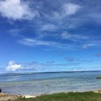 海と空とヤシ