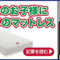 【完全保存版】フランスベッドの全てがわかるブログ!~随時更新~