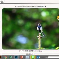 テレビ西日本の写真募集