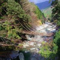 徳島の旅(その五)祖谷のかずら橋に挑戦!
