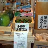9/3の野菜コーナー
