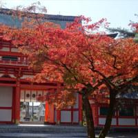 「今宮神社」/京都(2016晩秋)