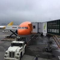 オランダに行きます