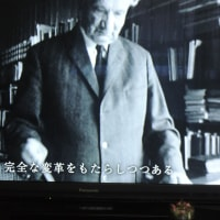 時代は独裁者をもとめた・新映像の世紀 「254」