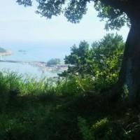韓国の倭城 その1 機張倭城