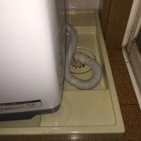 「洗濯機の水が洪水してるー!」