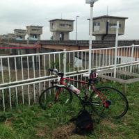 利根川支流のサイクリング