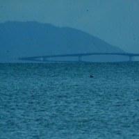 びわ湖の蜃気楼