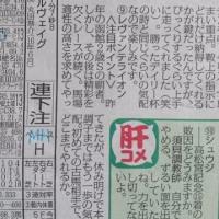 第24回函館スプリントS(G3)「昨年の雪辱!シュウジ」