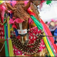 三股町早馬祭り(ジャンカン馬踊り)