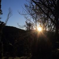 拉拉山の茶園へ 後編