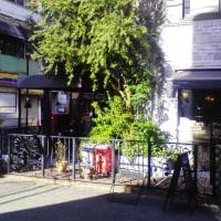 サミープー   Sammy Pooh!!   パンの美味しい店 大阪 心斎橋