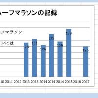 2017年新春矢作川マラソン、参加の巻