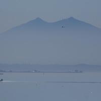 紫峰三態 漁港風景