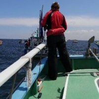 久里浜からタチ・アジのリレー釣り