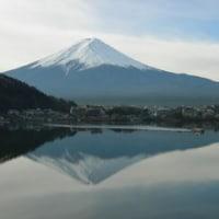 富士山を愛でる