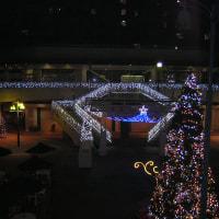 先週、団地クリスマスイルミネーションが点灯しました