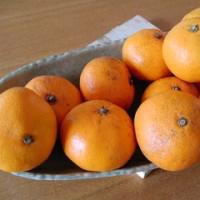 冬至に柚子