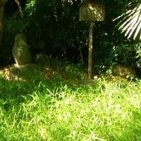 誰も見ない芭蕉句碑 車折神社