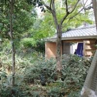 桜新町「古無門」、「虎幻庭」、「雪乃下世田谷店」 2017年5月末で閉店へ