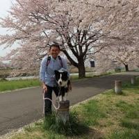 3/19・20 JFAつくば大会 2日目,3日目